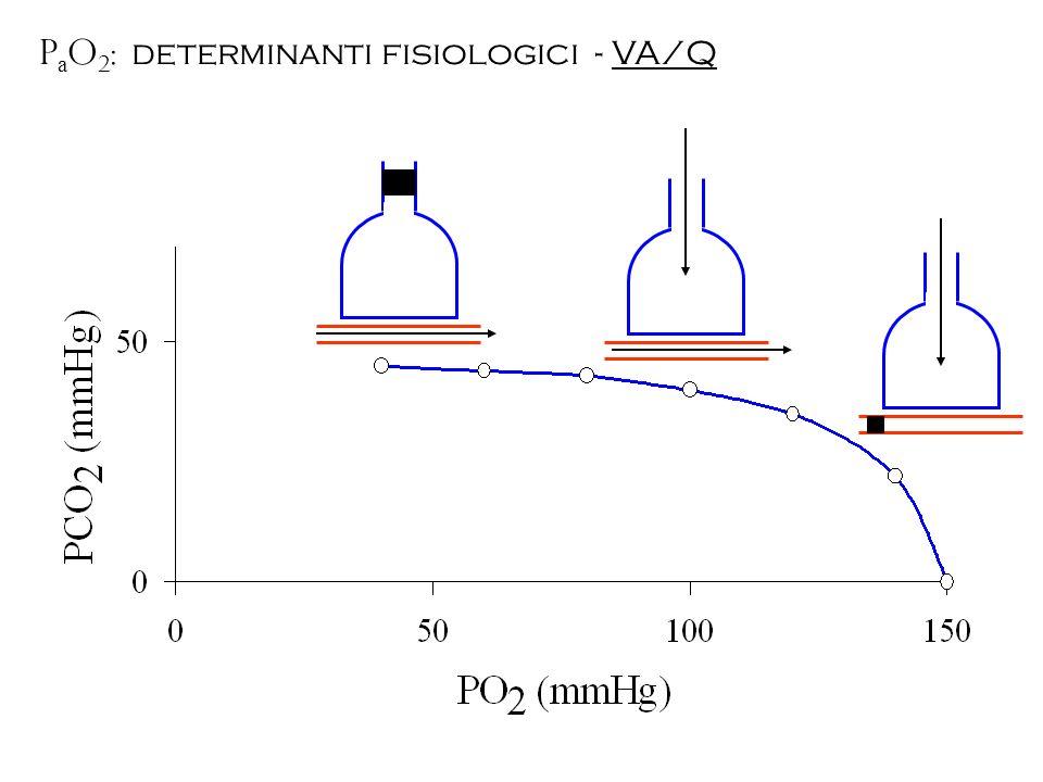 PaO2: determinanti fisiologici - VA/Q