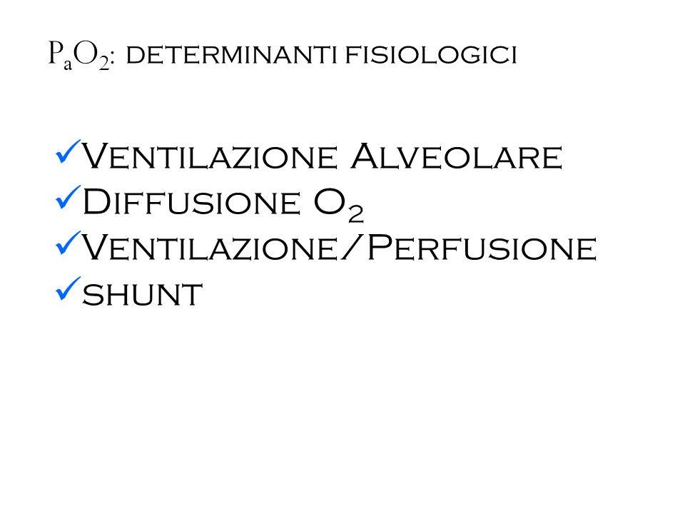 Ventilazione Alveolare Diffusione O2 Ventilazione/Perfusione shunt