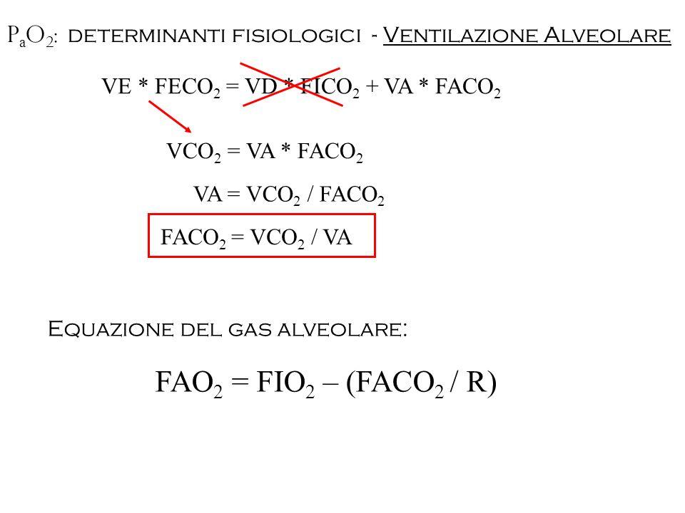 PaO2: determinanti fisiologici - Ventilazione Alveolare