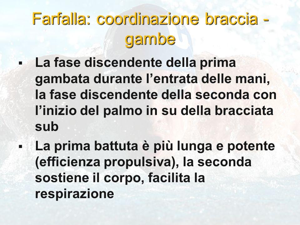 Farfalla: coordinazione braccia - gambe
