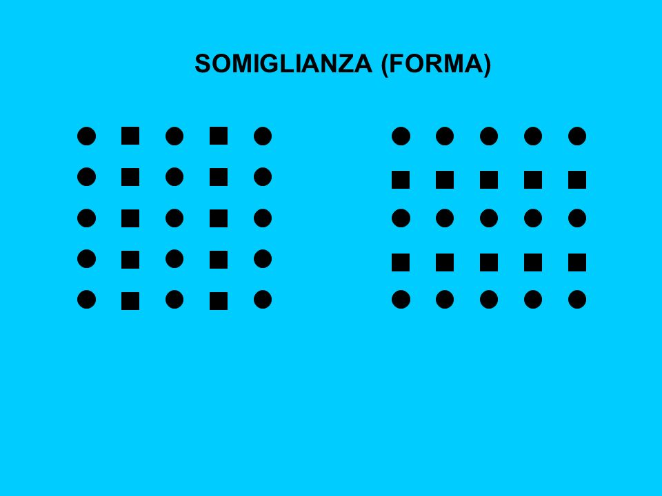 SOMIGLIANZA (FORMA)