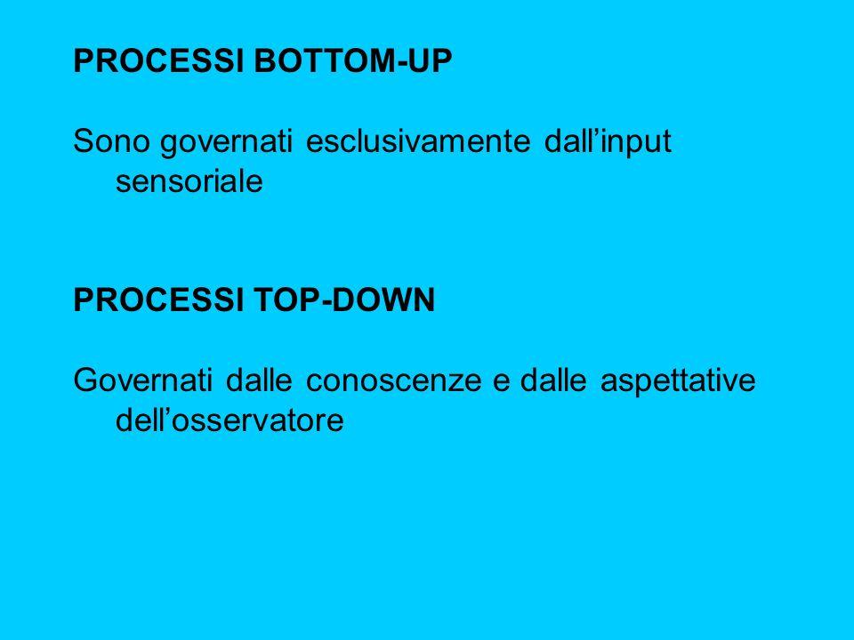 PROCESSI BOTTOM-UP Sono governati esclusivamente dall'input sensoriale. PROCESSI TOP-DOWN.