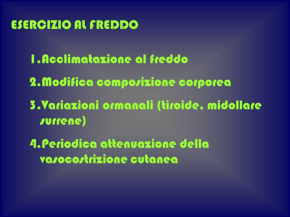 ESERCIZIO AL FREDDO Acclimatazione al freddo. Modifica composizione corporea. Variazioni ormanali (tiroide, midollare surrene)