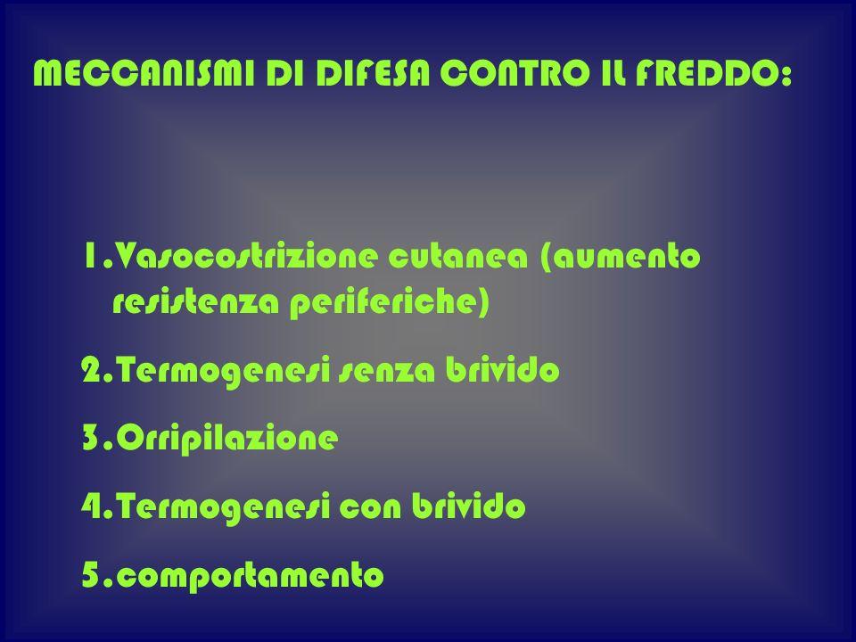 MECCANISMI DI DIFESA CONTRO IL FREDDO: