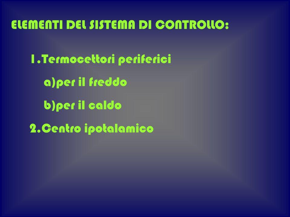 ELEMENTI DEL SISTEMA DI CONTROLLO: