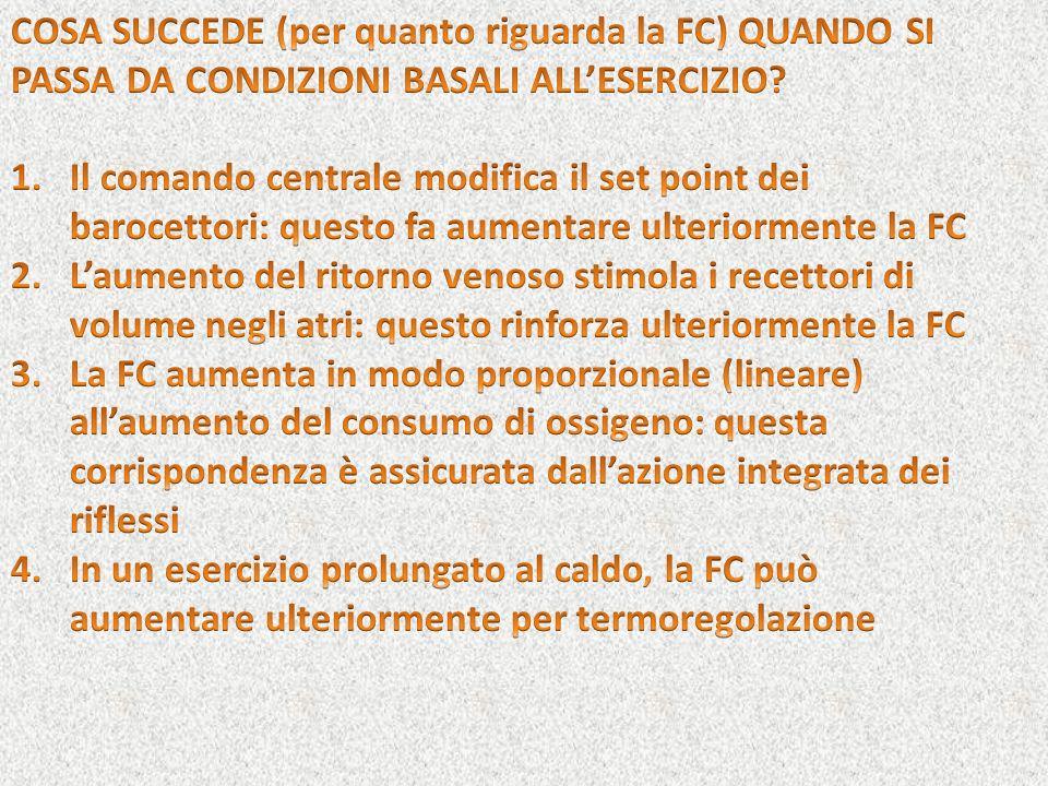 COSA SUCCEDE (per quanto riguarda la FC) QUANDO SI PASSA DA CONDIZIONI BASALI ALL'ESERCIZIO