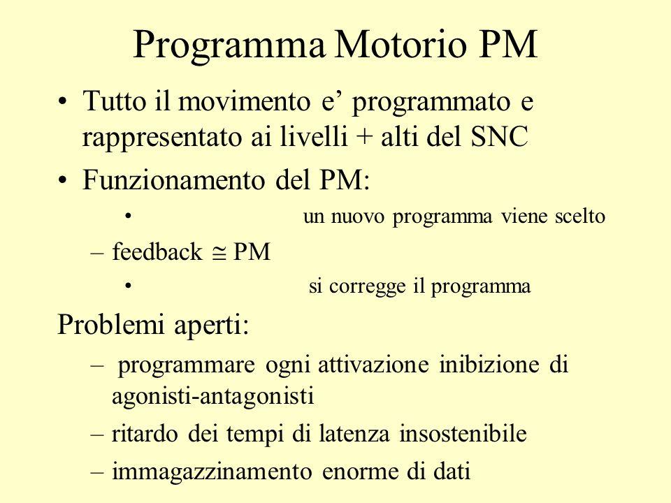 Programma Motorio PMTutto il movimento e' programmato e rappresentato ai livelli + alti del SNC. Funzionamento del PM:
