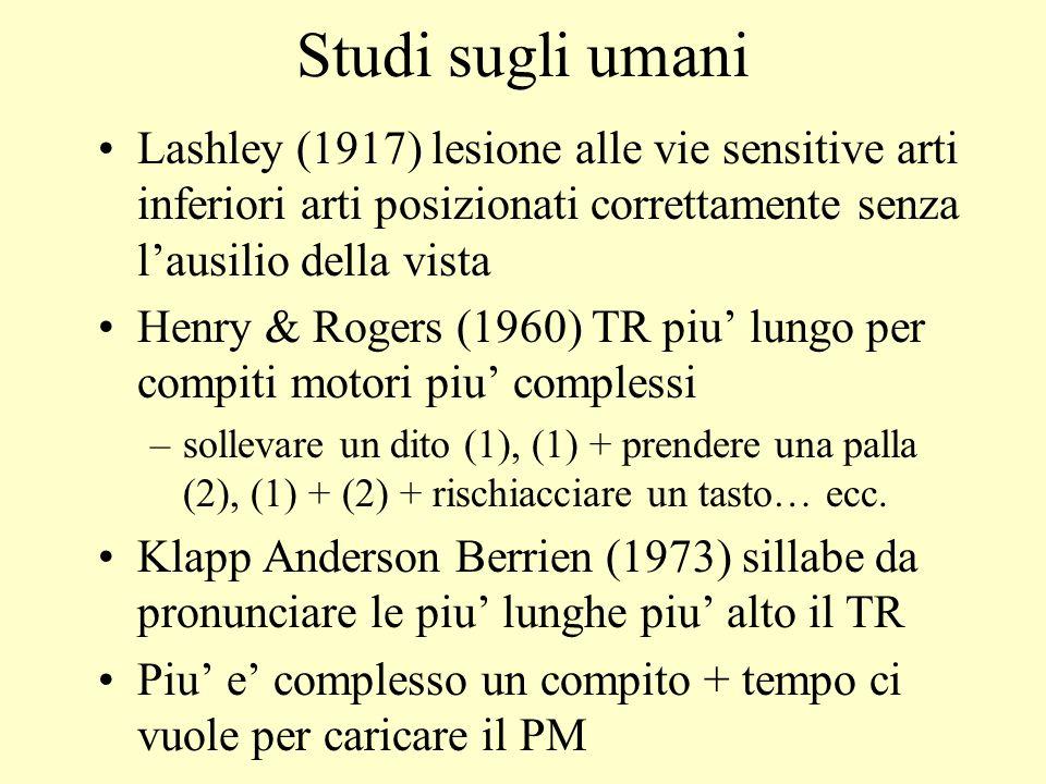 Studi sugli umaniLashley (1917) lesione alle vie sensitive arti inferiori arti posizionati correttamente senza l'ausilio della vista.