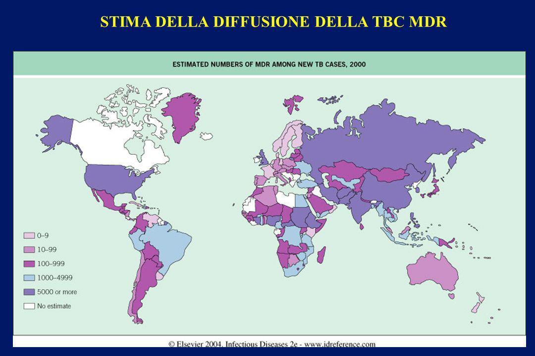 STIMA DELLA DIFFUSIONE DELLA TBC MDR