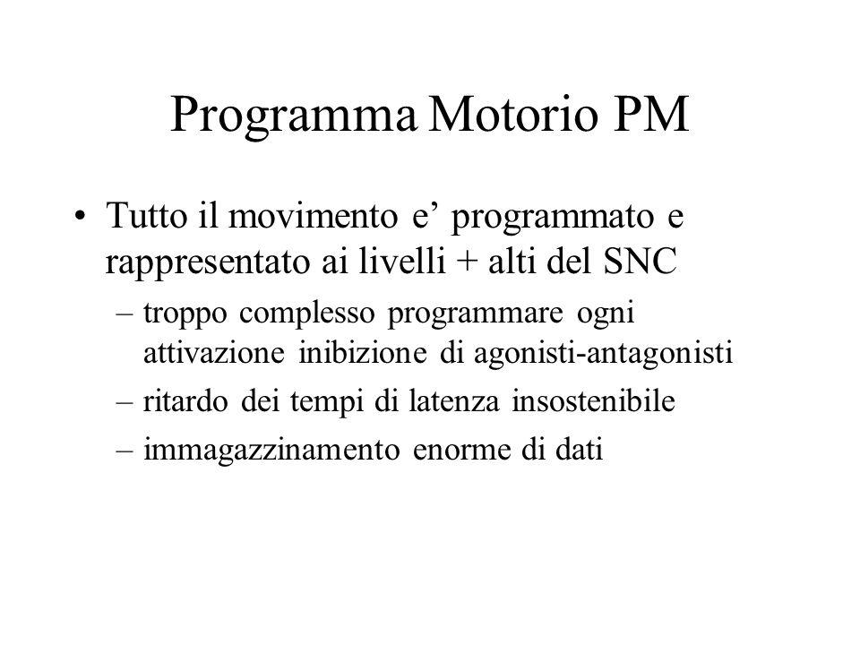 Programma Motorio PM Tutto il movimento e' programmato e rappresentato ai livelli + alti del SNC.