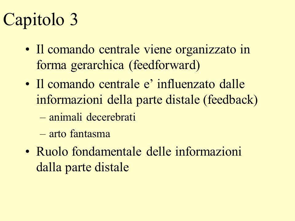 Capitolo 3 Il comando centrale viene organizzato in forma gerarchica (feedforward)
