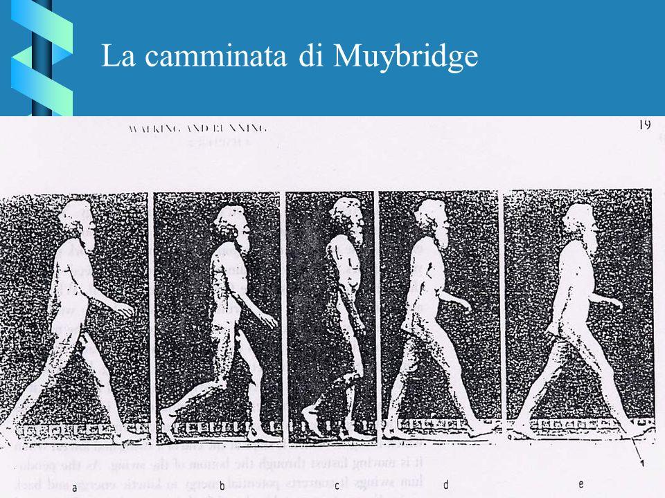 La camminata di Muybridge
