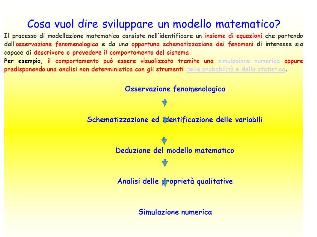 Cosa vuol dire sviluppare un modello matematico