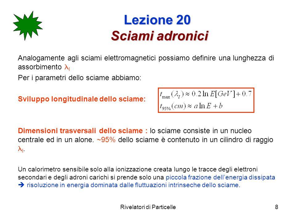Lezione 20 Sciami adronici