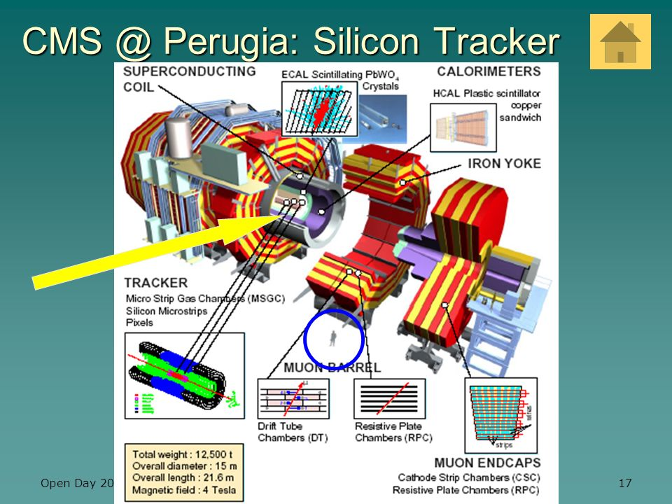 CMS @ Perugia: Silicon Tracker
