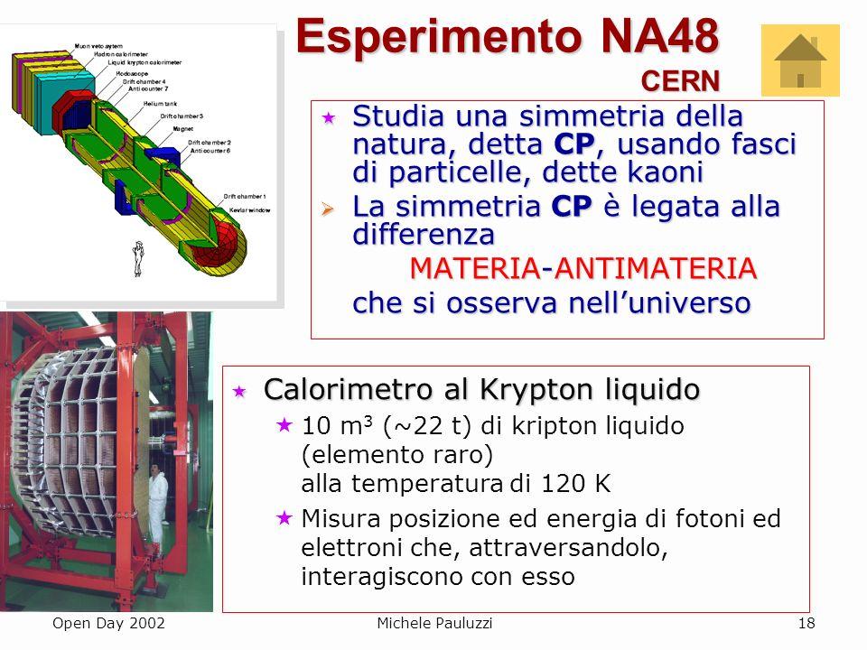 Esperimento NA48 CERN Studia una simmetria della natura, detta CP, usando fasci di particelle, dette kaoni.
