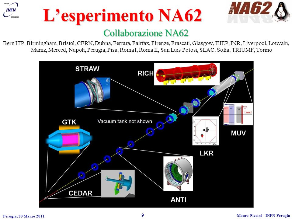 L'esperimento NA62 Collaborazione NA62
