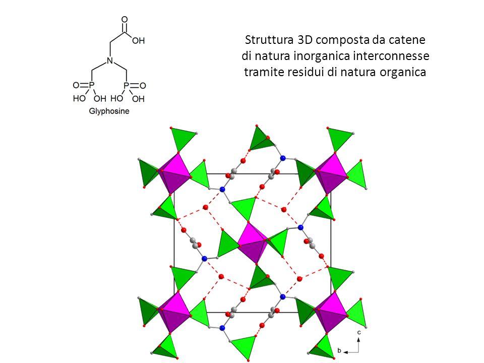 Struttura 3D composta da catene di natura inorganica interconnesse tramite residui di natura organica