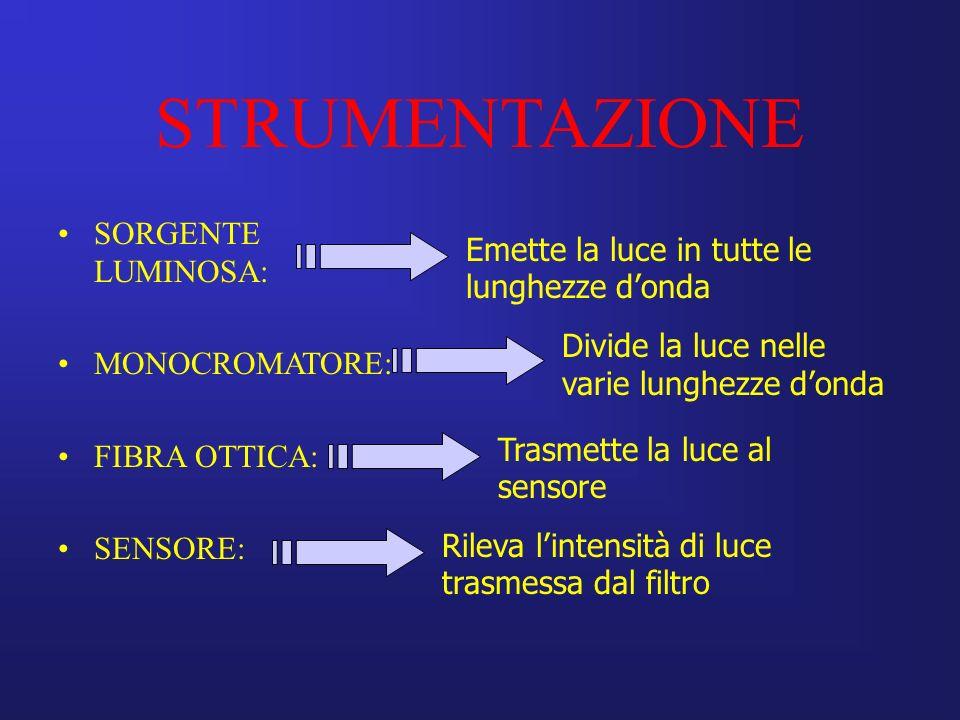 STRUMENTAZIONE SORGENTE LUMINOSA: