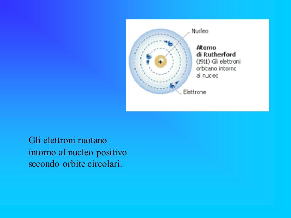 Gli elettroni ruotano intorno al nucleo positivo secondo orbite circolari.