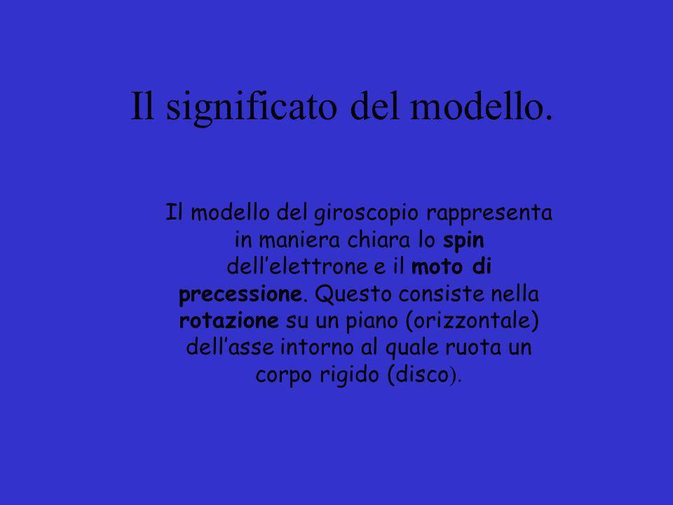 Il significato del modello.