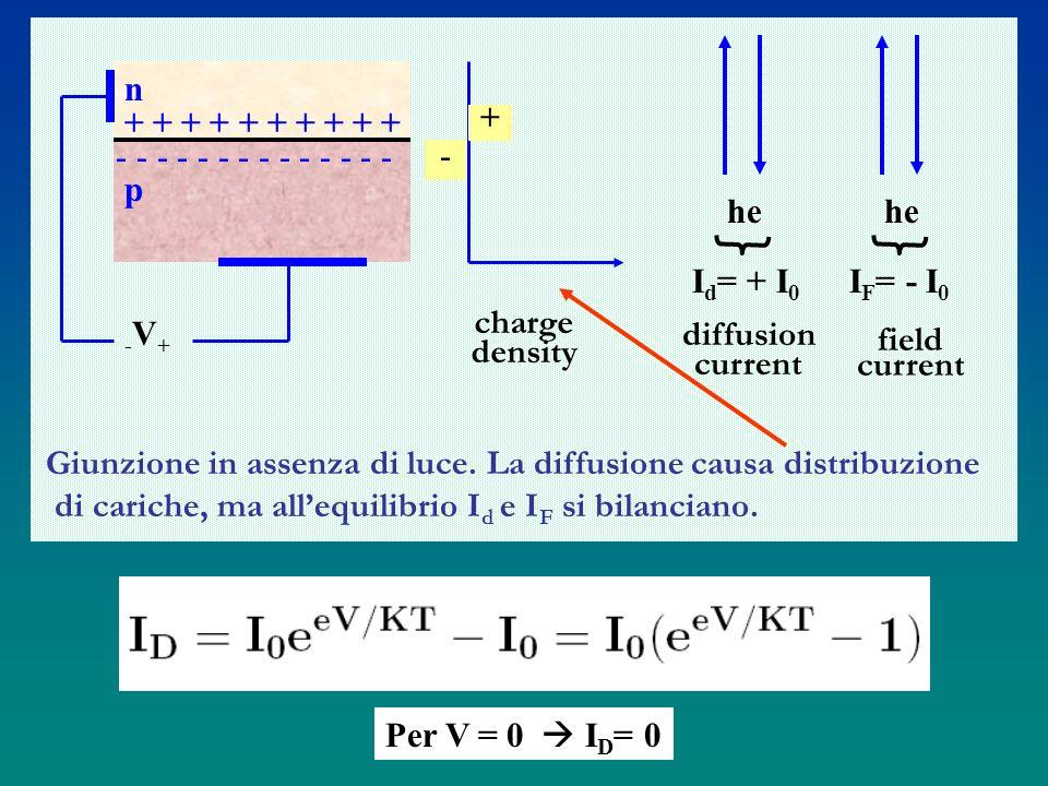 n+ + + + + + + + + + - - - - - - - - - - - - - p. -V+ charge. density. + - he. Id= + I0. IF= - I0. diffusion.