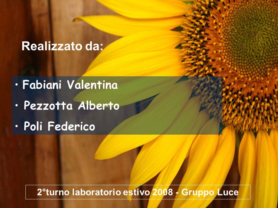 2°turno laboratorio estivo 2008 - Gruppo Luce