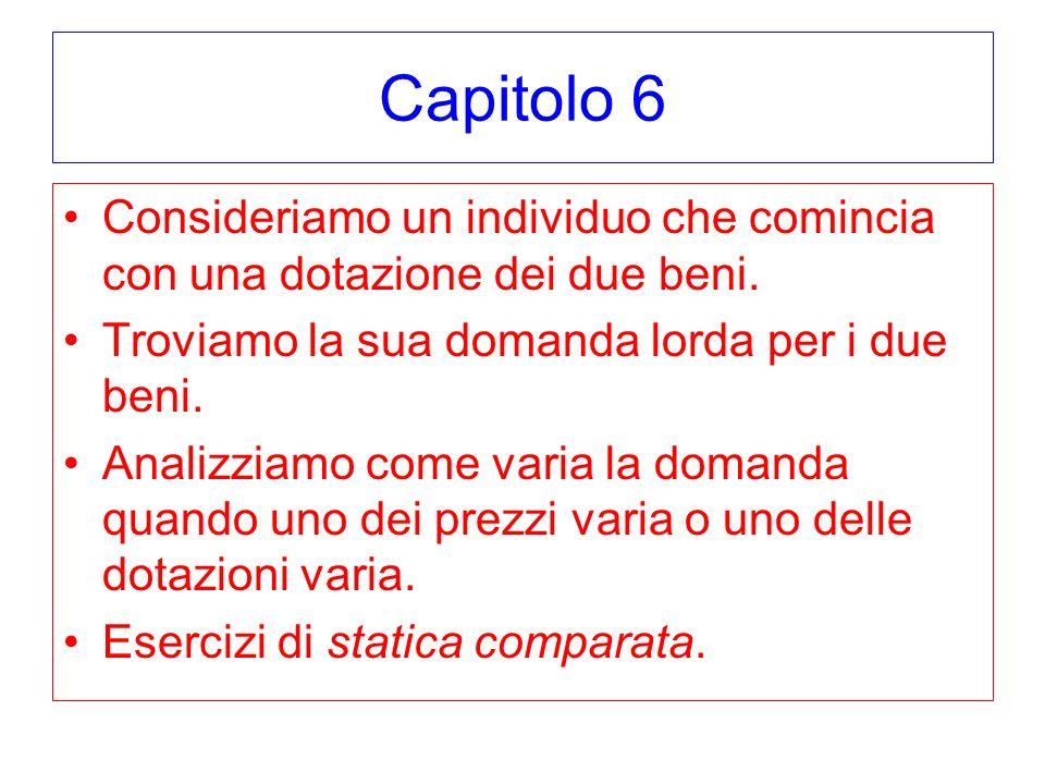 Capitolo 6 Consideriamo un individuo che comincia con una dotazione dei due beni. Troviamo la sua domanda lorda per i due beni.