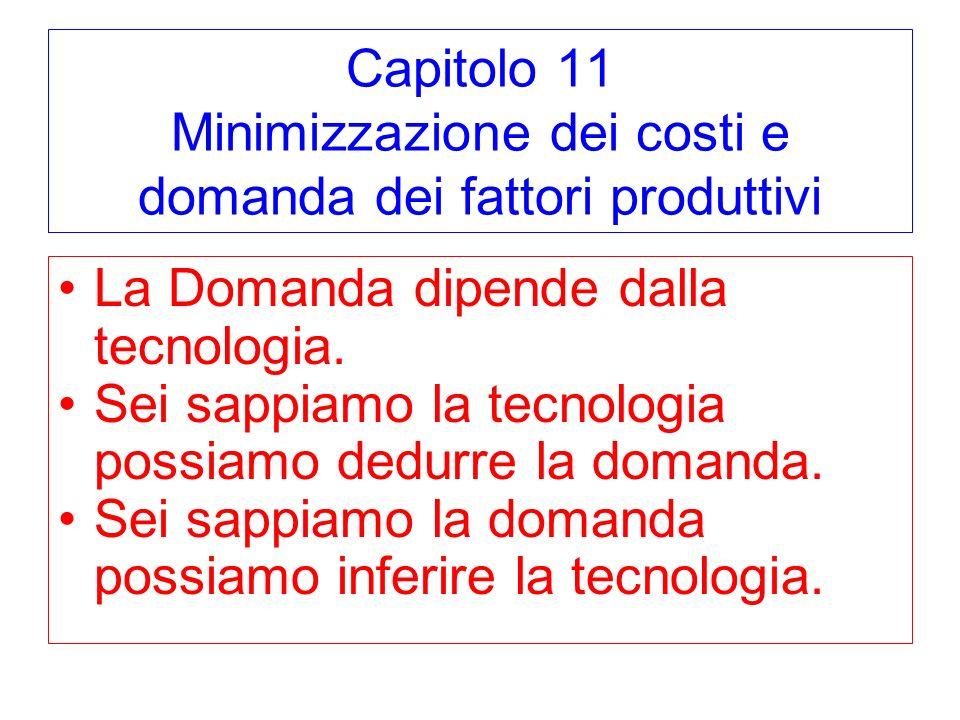 Capitolo 11 Minimizzazione dei costi e domanda dei fattori produttivi