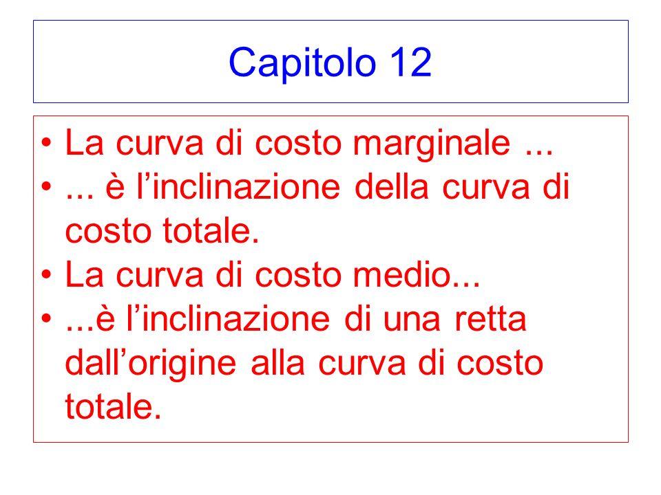 Capitolo 12 La curva di costo marginale ...