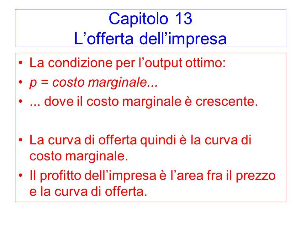 Capitolo 13 L'offerta dell'impresa