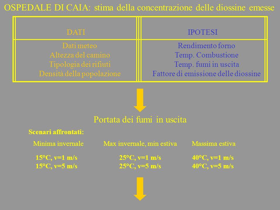 OSPEDALE DI CAIA: stima della concentrazione delle diossine emesse
