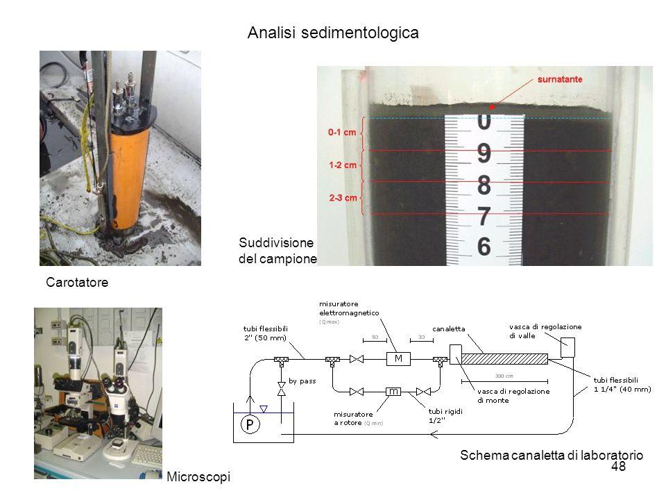 Analisi sedimentologica