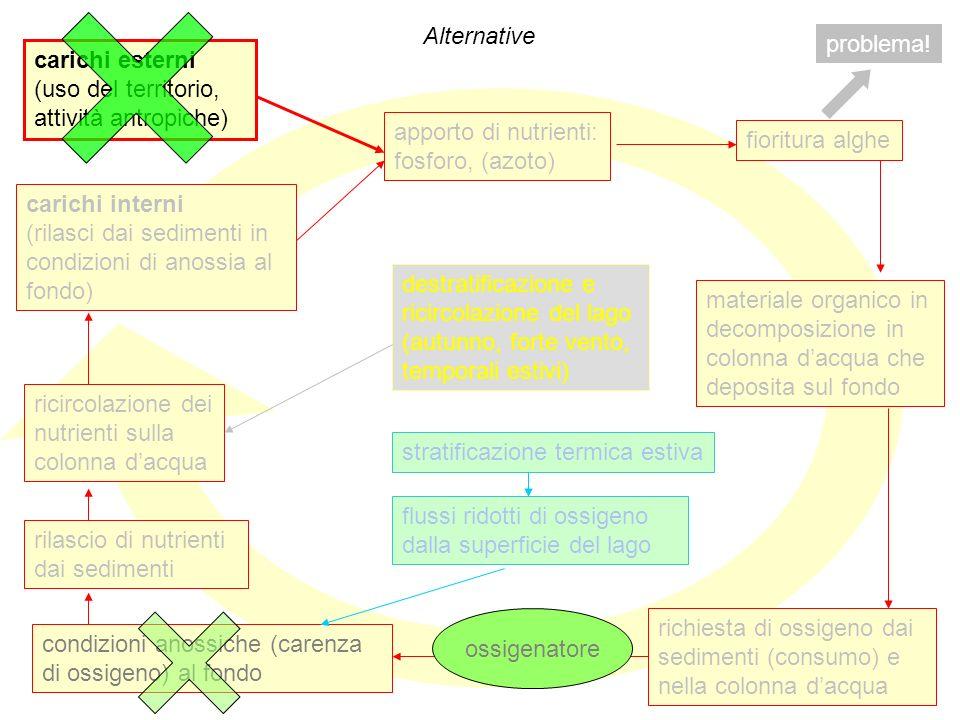 Alternative problema! carichi esterni. (uso del territorio, attività antropiche) apporto di nutrienti: