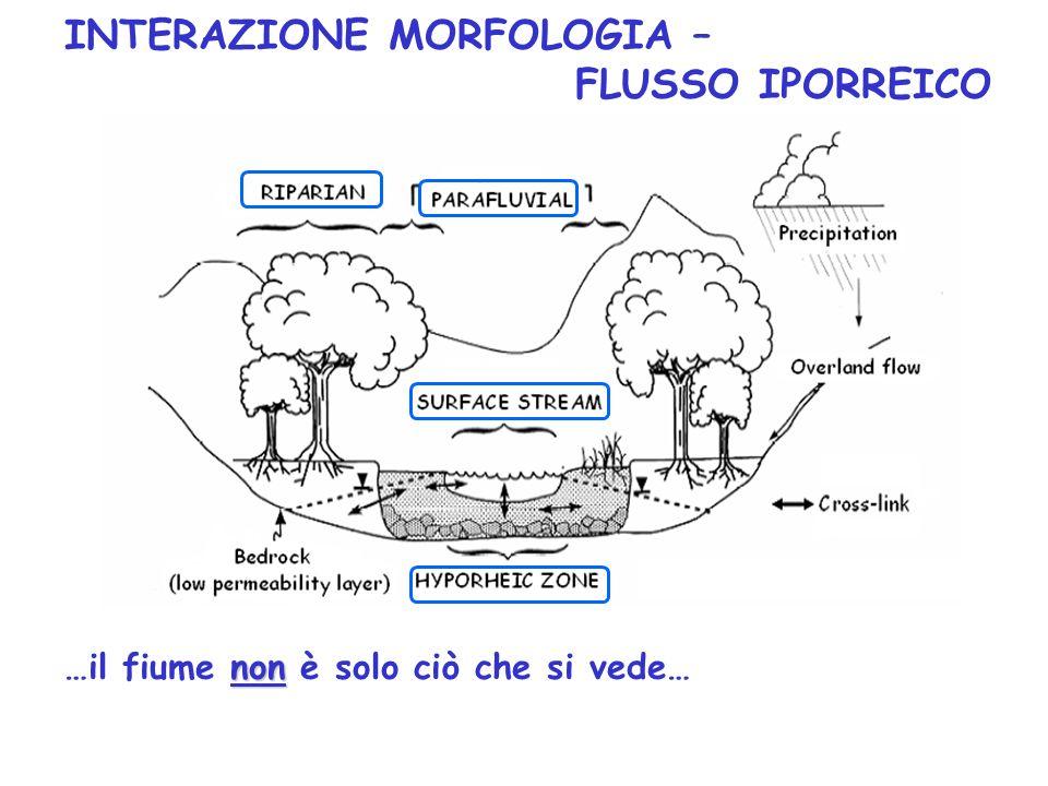 INTERAZIONE MORFOLOGIA – FLUSSO IPORREICO