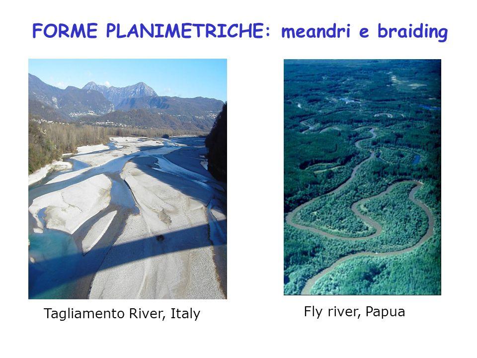 FORME PLANIMETRICHE: meandri e braiding