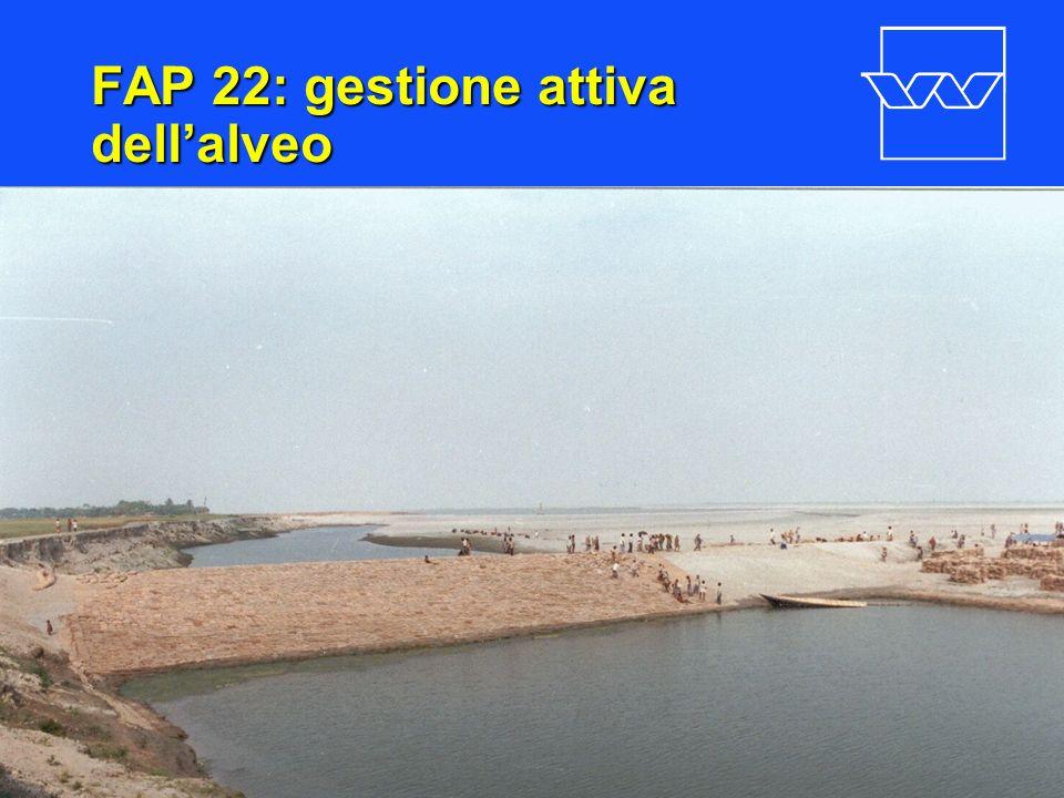 FAP 22: gestione attiva dell'alveo