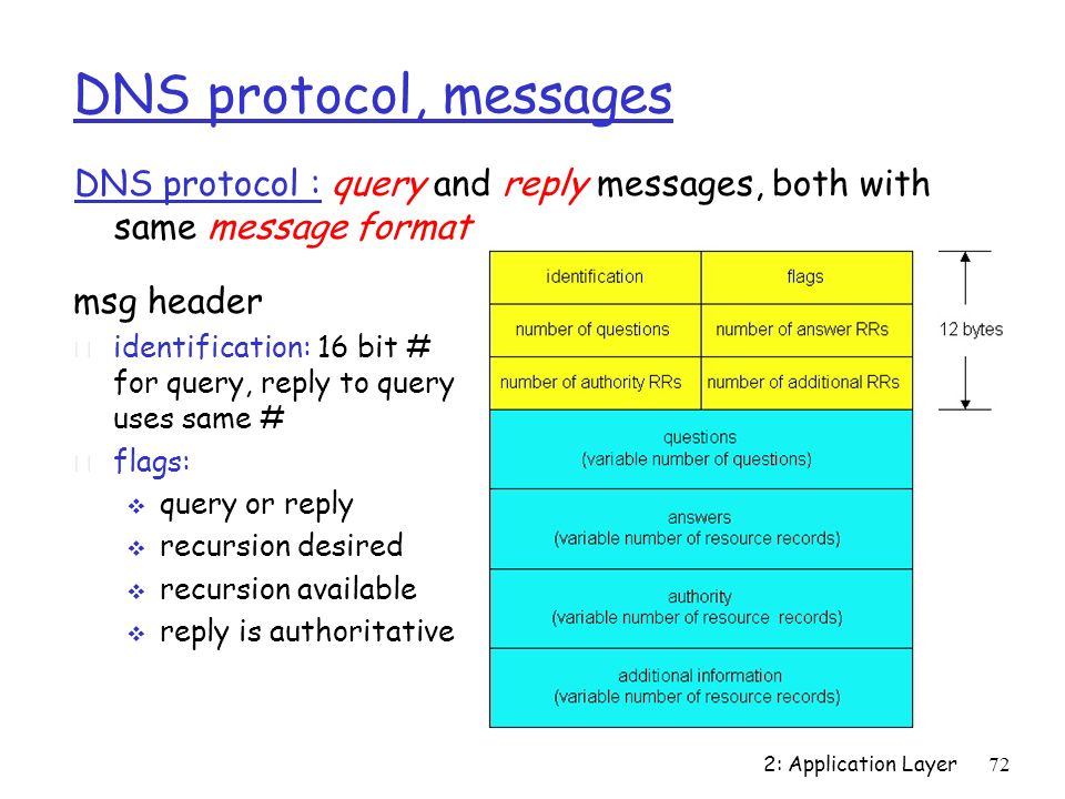 DNS protocol, messages DNS protocol : query and reply messages, both with same message format. msg header.