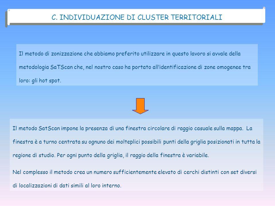 C. INDIVIDUAZIONE DI CLUSTER TERRITORIALI