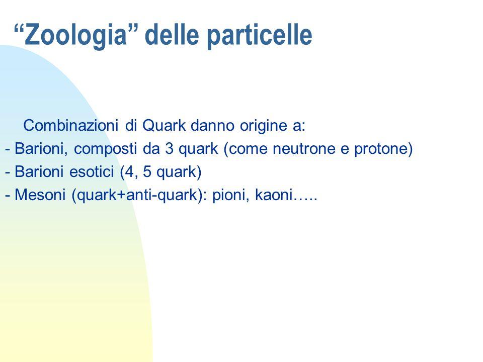 Zoologia delle particelle