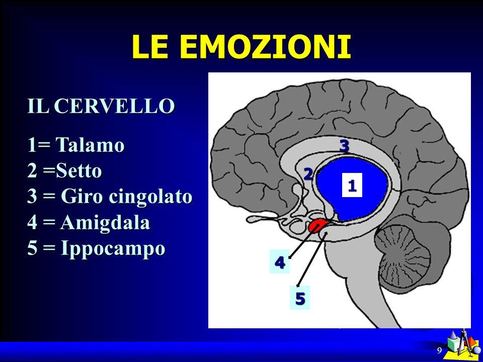 LE EMOZIONI IL CERVELLO 1= Talamo 2 =Setto 3 = Giro cingolato