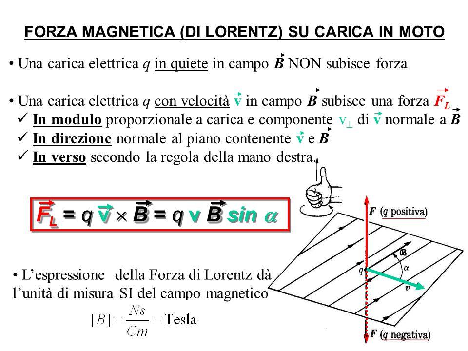 FORZA MAGNETICA (DI LORENTZ) SU CARICA IN MOTO