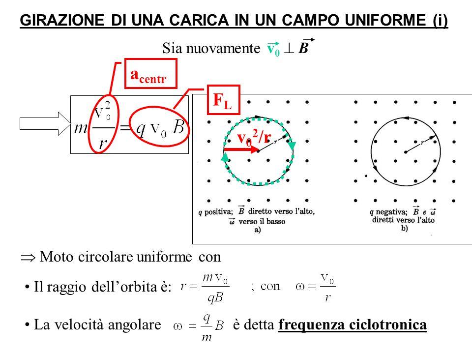 GIRAZIONE DI UNA CARICA IN UN CAMPO UNIFORME (i)