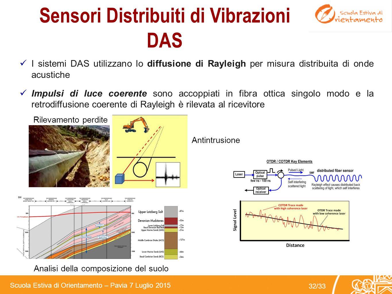 Sensori Distribuiti di Vibrazioni