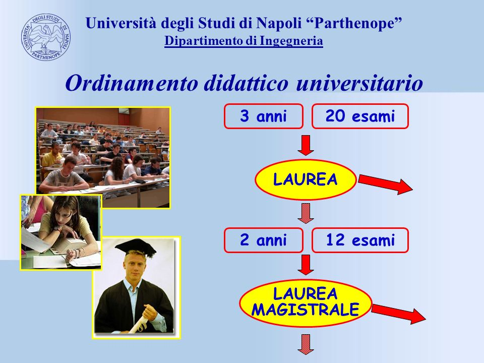 Ordinamento didattico universitario