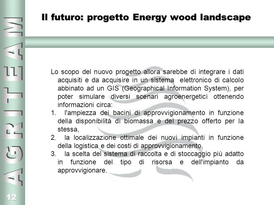 Il futuro: progetto Energy wood landscape