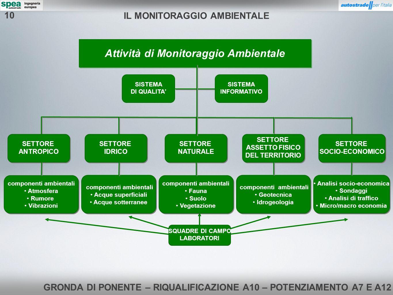 IL MONITORAGGIO AMBIENTALE Attività di Monitoraggio Ambientale