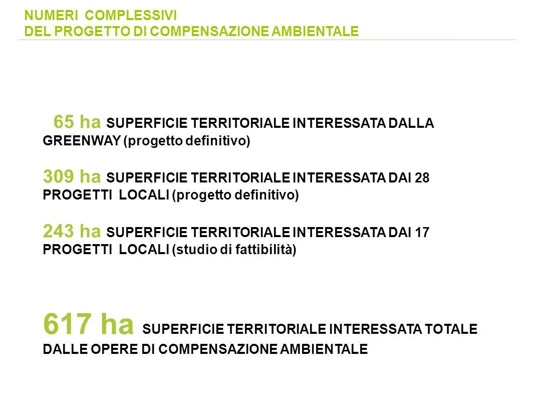 NUMERI COMPLESSIVI DEL PROGETTO DI COMPENSAZIONE AMBIENTALE. 65 ha SUPERFICIE TERRITORIALE INTERESSATA DALLA GREENWAY (progetto definitivo)