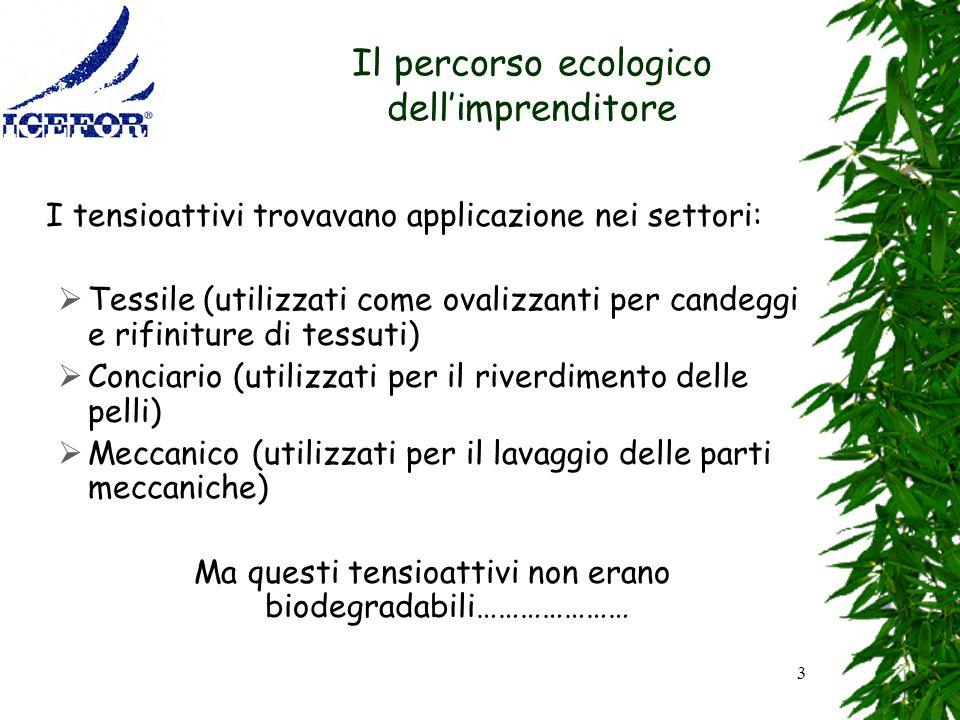 Il percorso ecologico dell'imprenditore