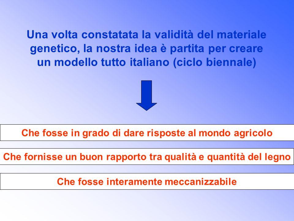 Una volta constatata la validità del materiale genetico, la nostra idea è partita per creare un modello tutto italiano (ciclo biennale)